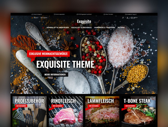 Shopware Theme - ThemeWare® Exquisite
